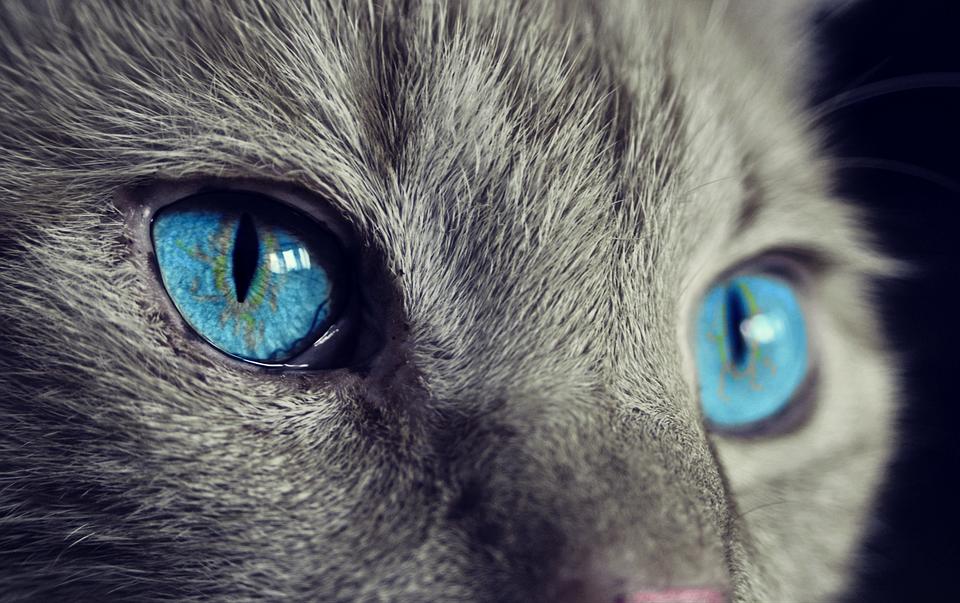 未来を見つめる青色のイメージ